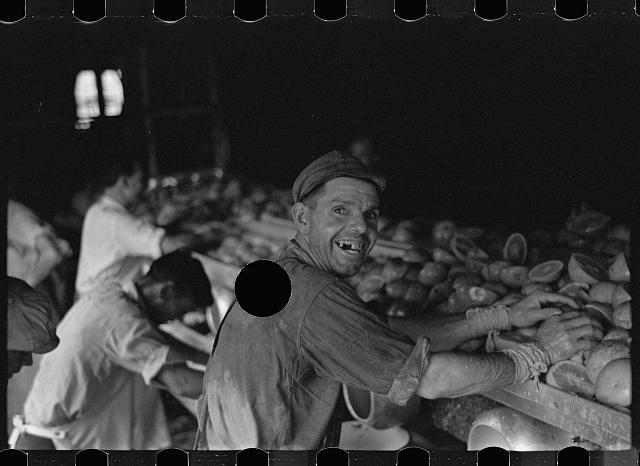 [Untitled photo, possibly related to: An employee of the grapefruit canning plant at Winter Haven, Florida]