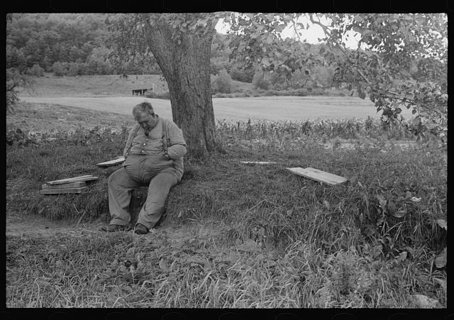 Fat man dozing in the shade of a tree, New Hampshire