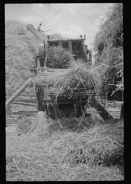 [Untitled photo, possibly related to: Brookeville, Maryland. Baling hay]