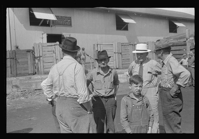 [Untitled photo, possibly related to: Boys by gate, Pickaway Livestock Cooperative Association, central Ohio]