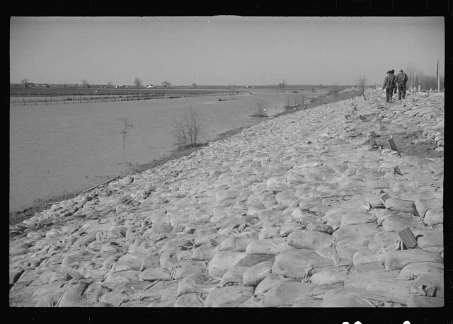 [Untitled photo, possibly related to: The Bessie Levee augmented with sand bags during the 1937 flood. Near Tiptonville, Tennessee]