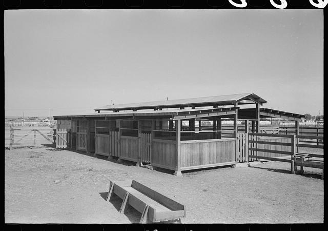 Dairy barn at Casa Grande Valley Farms, Pinal County, Arizona