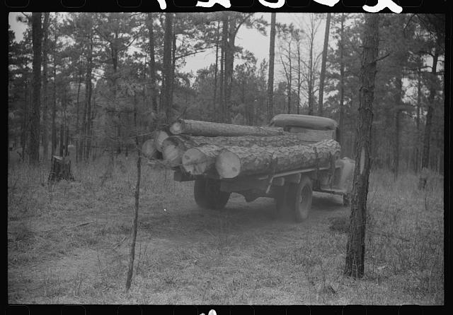 Hauling lumber, Heard County, Georgia