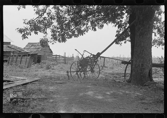A sharecropper's yard, Hale County, Alabama