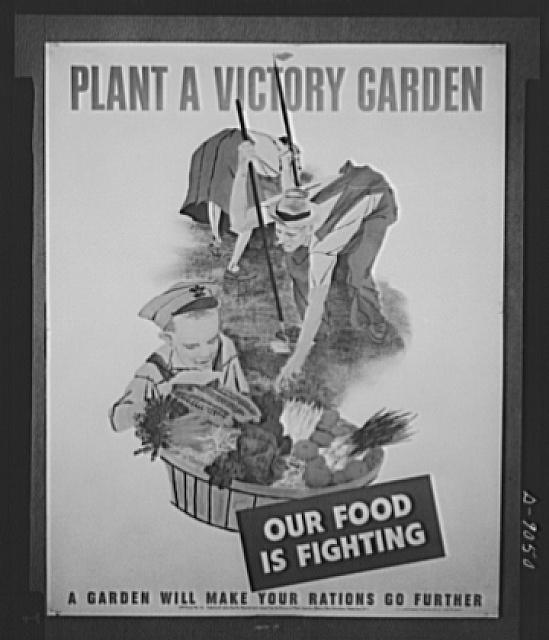 Plant a victory garden. Poster distributed by the Office of War Information to libraries, museums post offices. The original is 22 inches and is printed in full color. The poster was designed by Robert Gwathmey, mural artist. Copies are obtainable from Division of Public Inquiries, OWI, 14th and Pennsylvania Avenue, Washington, D.C.