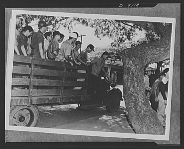Japanese enlistment. Another truckload of American citizens of Japanese ancestry arrive at Selective Service Board No. 9, Waipahu, Territory of Hawaii, to apply for voluntary induction into the recently organized combat regiment made up exclusively of 1,500 Americans of Japanese ancestry. They are part of a group of 110 men all of whom enlisted as soon as formation of the regiment was officially announced