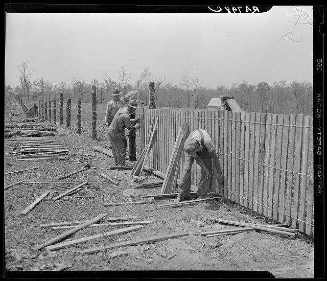 Erecting a fence at Cumberland Homesteads. Crossville, Tennessee