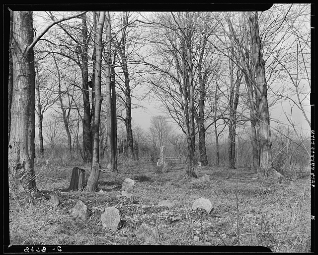 Four new graves in cemetery at Kempton, West Virginia, coal town. The infant mortality rate in this town is very high