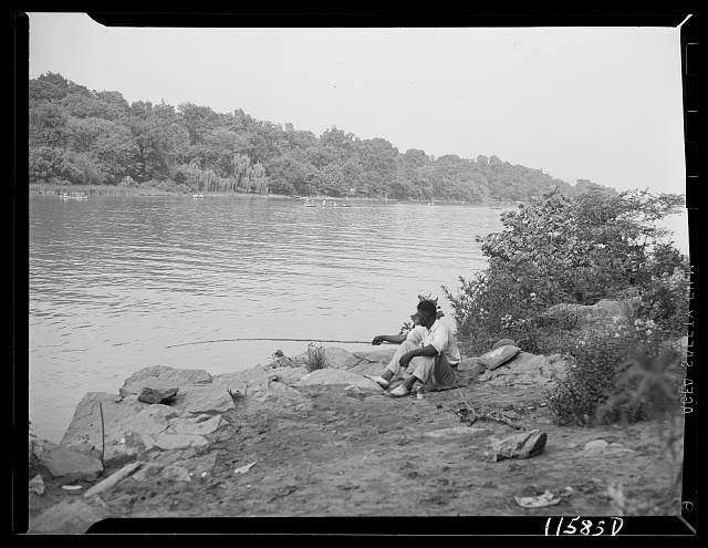 Washington, D.C. (vicinity). Negro fishing on the Virginia side of the Potomac River below the Chain Bridge