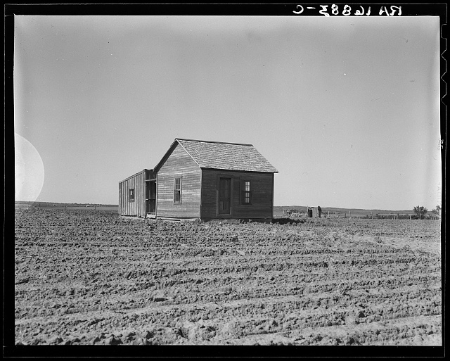 Cultivated fields and abandoned tenant house. Hall County, Texas
