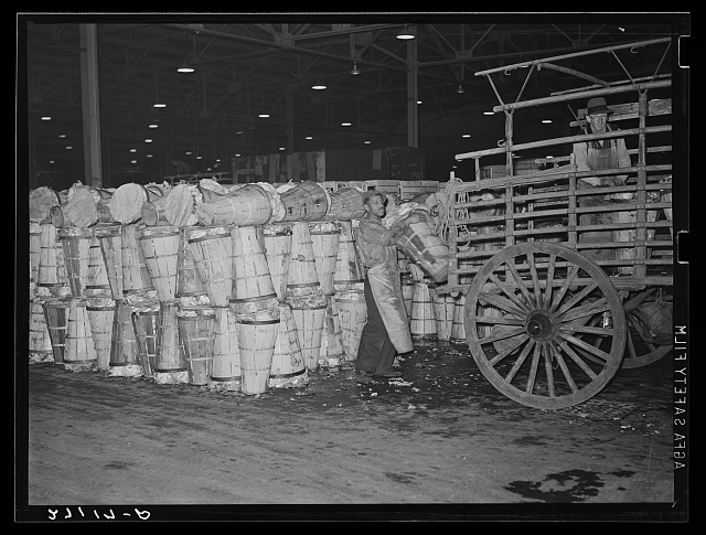 Loading crates of cabbages at produce market. Pier 29, New York City