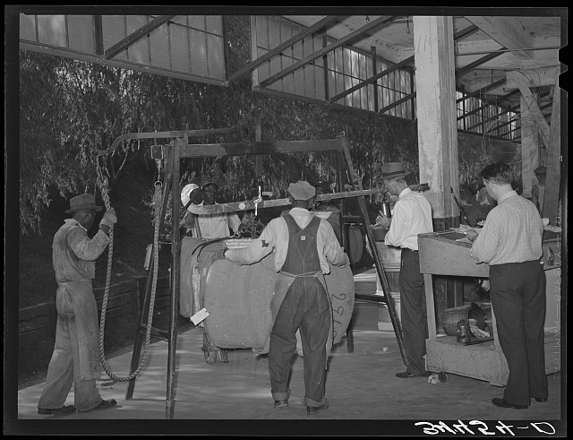 Weighing bale of cotton at unloading platform at compress. Houston, Texas