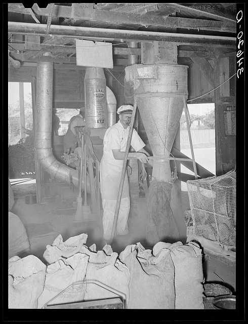 Proprietor of feed mill at hopper where ground feed pours into sack. Taylor, Texas