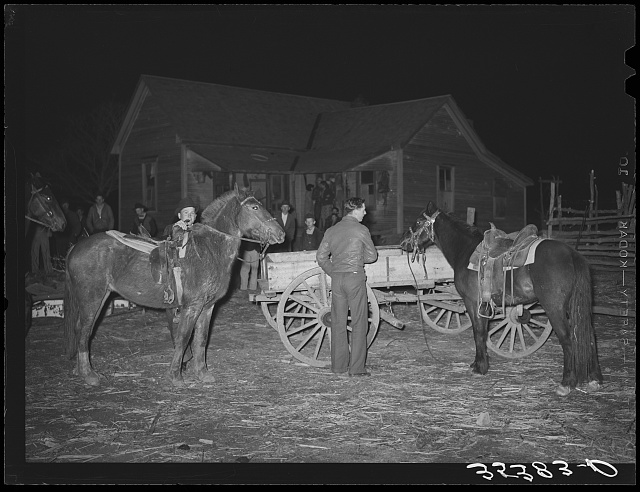 Farm boys trying up their horses at play party in McIntosh County, Oklahoma. See general caption number 26