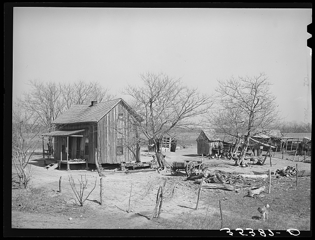 Yard of Negro farmer. McIntosh County, Oklahoma