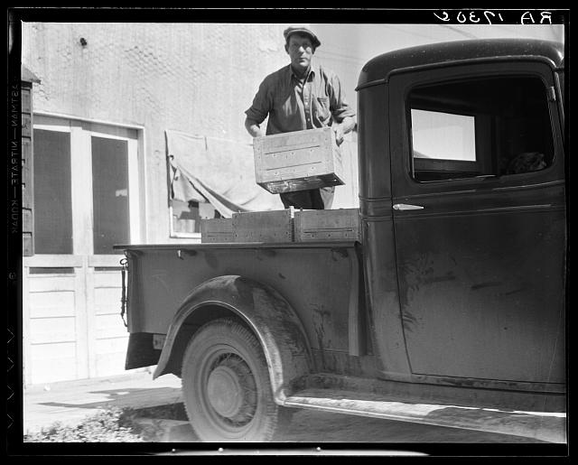 Loading milk at the self-help cooperative dairy which is being taken over by the Resettlement Administration. Near Santa Ana, California