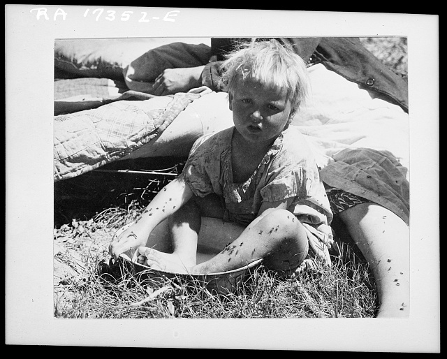 """Cleanliness."" Southern California. Oklahoma refugees camping in Imperial Valley, California"