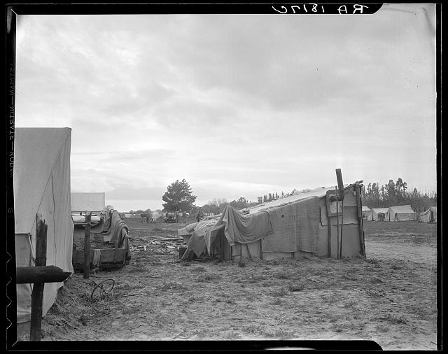Camps of migrant pea workers. California