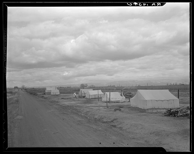 Roadside ranch camp owned by large grower who is opposed to Resettlement Administration's Kern County migrant camp. California