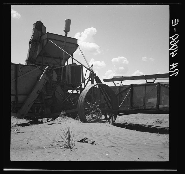 Dust covering harvester. Castro County, Texas