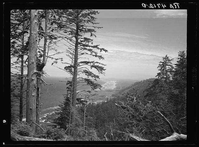 View of the Oregon coast from Cape Perpetua included in the recreation and forest conservation area being developed by Resettlement Administration