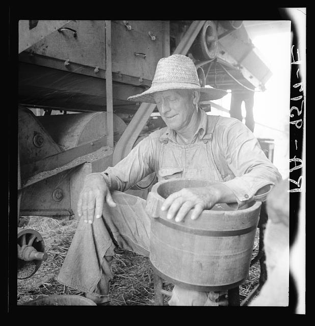 American farmer near Durham, North Carolina