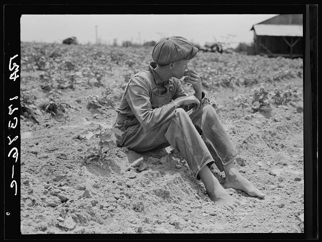 Sharecropper boy. Chesnee, South Carolina
