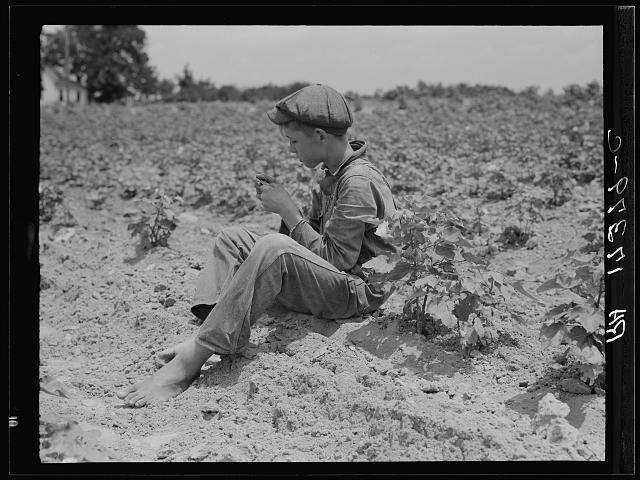 Sharecropper boy near Chesnee, South Carolina
