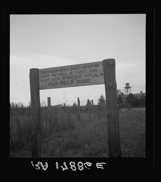 Roadsign near Fullerton, Louisiana
