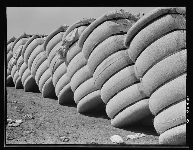 Cotton bales in gin yard outside Bakersfield, California. Cotton has been produced commercially in California since 1909. In 1936 California produced 3.3% of the cotton in United States
