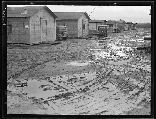 "Bottonwillow, California. ""Company"" cotton pickers' camp after picking season. Some families remain for tag ends of picking and pulling bolls, or for lack of other winter quarters"