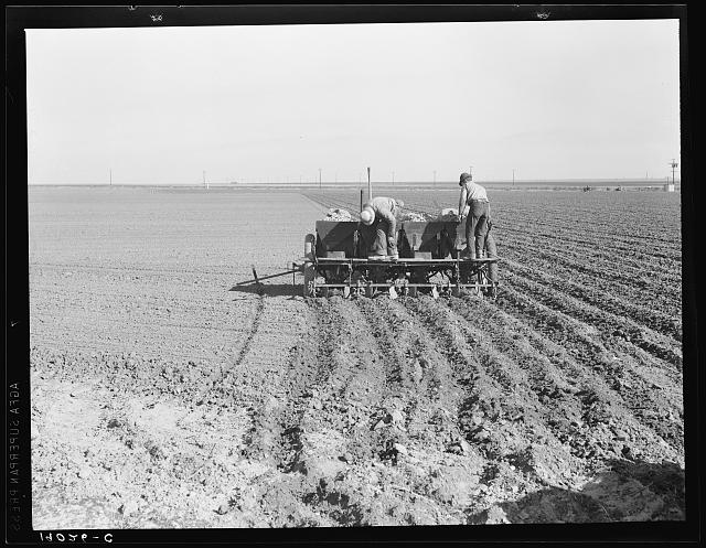 Large-scale, mechanized farming. The potato planter, operated by a crew of three men, makes the rows, fertilizes and plants potatoes in one operation. Kern County, California