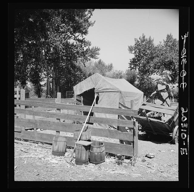 Shelter in one of the large shacktown communities around Yakima. Yakima, Washington, Sumac Park