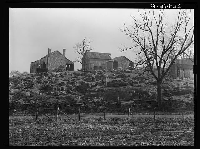 A rocky farm in western Virginia. Alleghany County