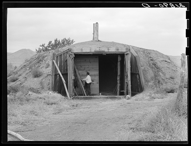 Potato cellar in the Klamath Basin in which 4000 one hundred-pound sacks will be stored. Merrill, Klamath County, Oregon