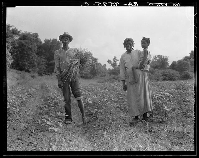 A Mississippi Negro family who live on a cotton patch near Vicksburg