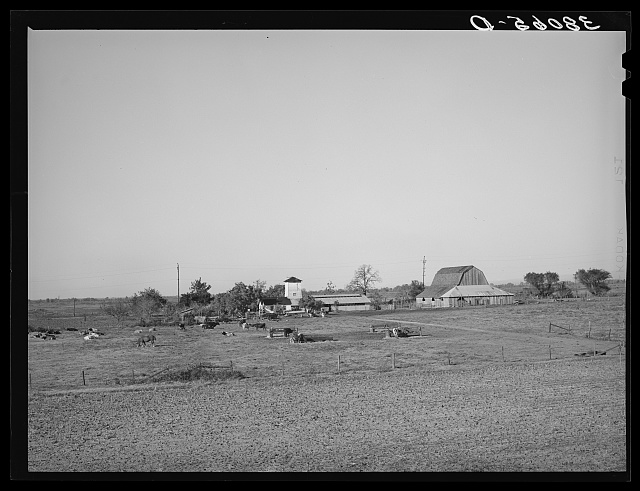 Farmstead of Carl Rubel, successful dairy farm operator. Yuba County, California