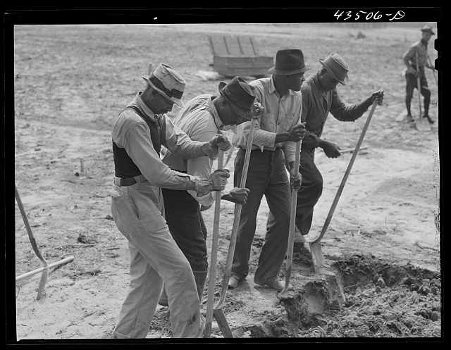 Digging new graves for a cemetery that is being moved out of the Santee-Cooper basin. Near Bonneau, South Carolina