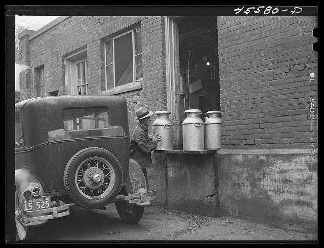 Farmer bringing in the milk at the Burlington cooperative milk bottling plant. Burlington