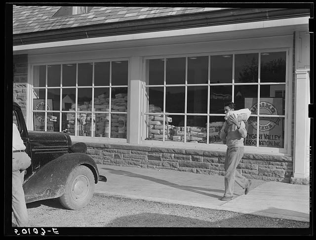 Roofing materials and flour in window of community store. Tygart Valley project, West Virginia