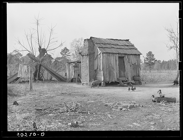 Negro's home near Beaufort, South Carolina, showing mud chimney