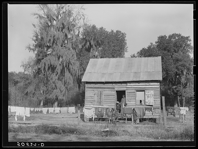 Negro home near Charleston, South Carolina