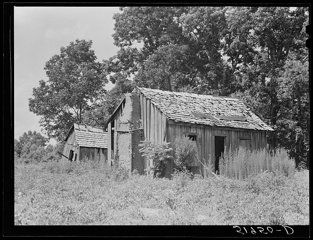 Abandoned shacks near Beaufort, South Carolina