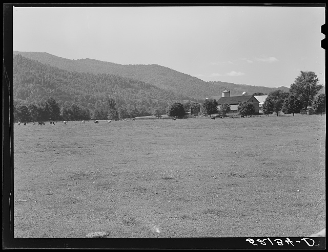 State agricultural experiment station near Black Mountain, North Carolina