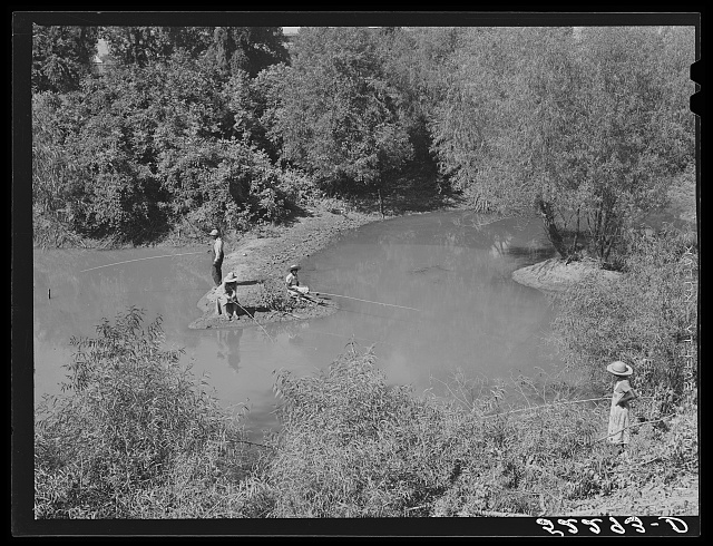 Negroes fishing in creek near cotton plantations outside Belzoni. Mississippi Delta, Mississippi
