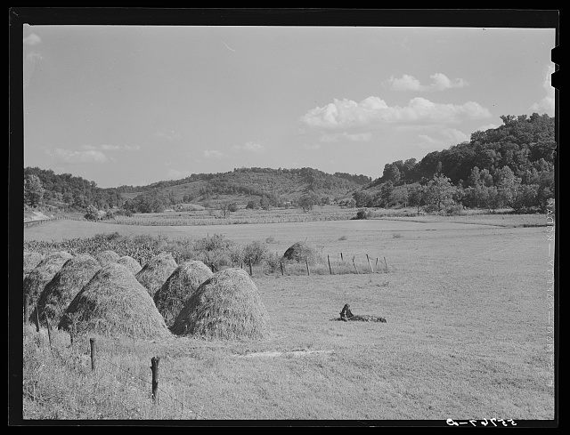 General landscape with haystacks on highway between Jackson and Campton, Kentucky