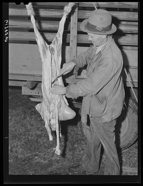 Butchering goat. Oregon County, Missouri