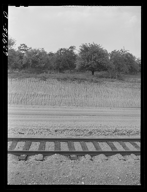 Railroad track running through apple orchard in Martin County, Indiana. Part of 42,000 acre tract where Navy is constructing ammunition depot