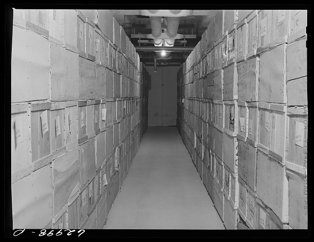 Eggs in storage at Fulton Market cold storage plant. Chicago, Illinois