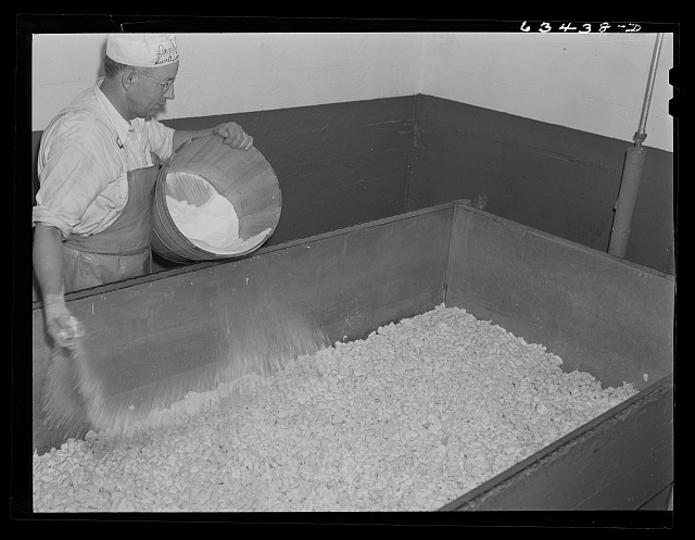 Salting the curd in making American cheese. Antigo, Wisconsin